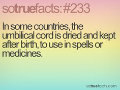In some countries, the umbilical cord is dried and kept after birth, to use in spells or medicines. #weird #facts #fact #sotruefacts