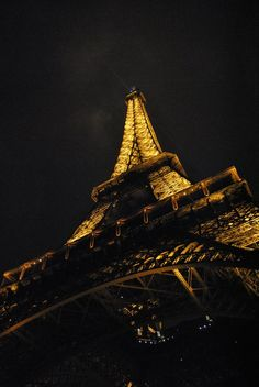 Eiffle Tower at night photo taken by Dudley Gardner