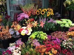 Fresh flowers makes a happy home!  Flower Market, San Francisco