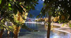 Beautiful New Zealand: Queenstown Walk in Photos - Routes and Trips Water Activities, Outdoor Activities, Queenstown Gardens, Lunch On The Beach, New Zealand Cities, Queenstown New Zealand, Lake Wakatipu, Autumn Walks, New Zealand South Island