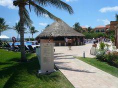 Ocean Coral & Turquesa: Pool Bar
