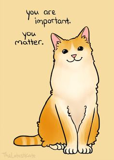 - great inspiration - - - You are important. You matter.whether you are a kitty or a person. Inspirational Animal Quotes, Cute Animal Quotes, Cute Quotes, Happy Thoughts, Positive Thoughts, Positiv Quotes, You Are Important, Just In Case, How Are You Feeling