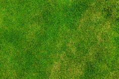 soccer grass texture hd - Buscar con Google