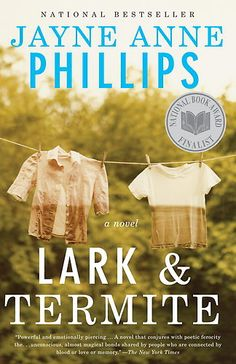 Lark and Termite by Jayne Anne Phillips -