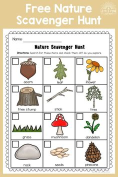 your FREE Nature Scavenger Hunt for kids here! This is a simple and fun outdoor activity for nature loving kids. Nature Activities, Outdoor Activities For Kids, Summer Activities, Preschool Activities, Outdoor Scavenger Hunts, Nature Scavenger Hunts, Scavenger Hunt For Kids, Treasure Hunt For Kids, Nature Hunt