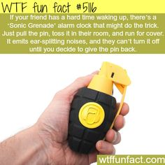 I would use this for emergencies like if I fall into a crevice or someone is trying to rape me Wtf Fun Facts, True Facts, Random Facts, Crazy Facts, Random Stuff, Funny Stuff, Strange Facts, Stupid Stuff, Funny Things