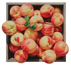 National Geographic, 129x110cm Apple, 57.5x53.5cm, 120x110cm, F.R.P, Urethane Painting, 2010 가을향기, 226.1x210cm, Oil on Canvas, 2010 탐스러운 상자, 224x20 Peach Aesthetic, Fruit Tea, Just Peachy, Planner Pages, Illustrations And Posters, Watercolor Paintings, Watercolour, Still Life, Harvest