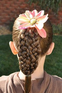 Two 5 strand braids next to each other take on the appearance of a ten strand braid.