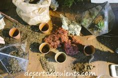 The best soil for succulents you make yourself.