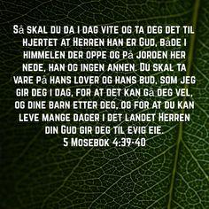 5 Mosebok 4:39-40