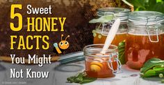 Honey isn't just a sweet treat; it has powerful medicinal uses so make sure you choose raw, unfiltered honey. http://articles.mercola.com/sites/articles/archive/2014/10/20/health-benefits-honey.aspx