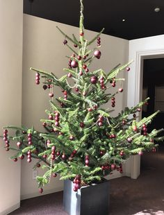 ANASTASIA X'MAS TREE  2016 #flower #shop #works #matilda #中目黒 Matilda, Anastasia, It Works, Christmas Tree, Display, Holiday Decor, Green, Flowers, Shop