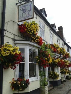 Beautiful Flowers Mug House  Inn Bewdley