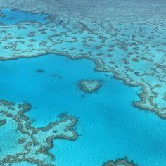 大堡礁送你一個 great barrier reef sent u a  #greatbarrierreef #heartreef #lovewhitsundays #聖靈群島 #whitsubdays #discoverwhitsundays by nitbee http://ift.tt/1UokkV2