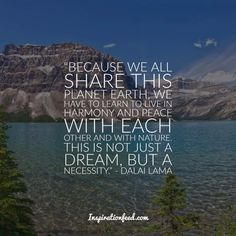 Learn the wisdom and message of compassion of the Dalai Lama. Here are the best Dalai Lama quotes compiled for you. Love Thoughts, Positive Thoughts, New Quotes, Happy Quotes, Compassion Quotes, Quotes About Strength And Love, Summer Humor, Girl God, Buddhist Philosophy