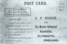 The 108-year-old message in a bottle from a British marine researcher washed up on a German beach
