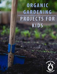 Organic Gardening: Projects for Kids!NEW Release! Love Garden, Easy Garden, Garden Pests, Garden Tools, Gardening For Beginners, Gardening Tips, Building Raised Beds, Garden Maintenance, Planting Seeds