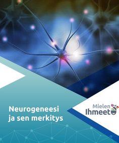 Neurogeneesi ja sen merkitys   Neurogeneesion olennainen osa neuronienplastisuutta ja tärkeitä aivotoimintoja kuten oppimista ja muistiin painamista. Sitä tapahtuu aikuisillekin. Granada, Chile, Brain, Movies, Movie Posters, The Brain, Chili, Film Poster, Films