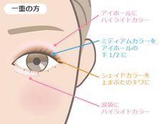 アイシャドウの塗り方1から教えます!パレット使いから色選びのコツを ... 一重さんのアイシャドウ Beauty Makeup, Hair Beauty, Thing 1, Beauty Advice, Eye Make Up, Eyes, How To Make, Magic, Girls