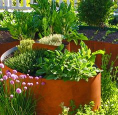 Steel retains heat, which makes it the perfect material for raised vegetable beds, especially for warm-weather crops such as tomatoes, peppers, and eggplant. It is also a wonderful medium to experiment with color and pattern.  Exteriorscapes, Seattle