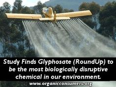 Study finds Glyphosate (RoundUp) to be the most biologically disruptive chemical in our environment. http://nobull.mikecallicrate.com/news/wp-content/uploads/2013/04/GlyModern-diseaseSamsel-Seneff-13.pdf