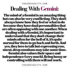 Zodiac Files: Dealing With A Gemini | TheZodiacCity