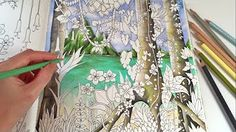 O Rio por Diana Moraes (Livro: Selva Mágica/Magical Jungle by Johanna Basford)…