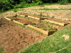 raised garden beds on hillside. This will work perfect on our hillside for our garden next year:)