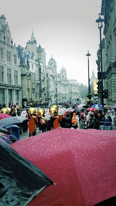 New Year's Day Parade in the rain!