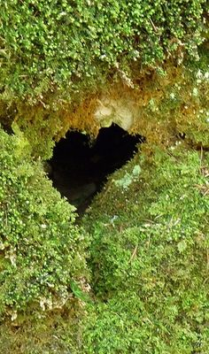 Mystery-Heart-A perfect heart shaped hole in a mossy covered limestone wall