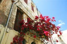 Chania, Kreta (Crete)