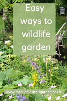 The best habitats and plants for wildlife in urban or small gardens. Easy DIY ideas for wildlife gardening Back Gardens, Small Gardens, Easy Garden, Garden Ideas, Insect Hotel, Garden Privacy, Winter Plants, Annual Flowers, Cool Plants
