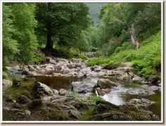 Wicklow Mountains- Dargle (Leinster, Ireland)