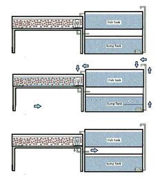 Image result for aquaponic system with sump