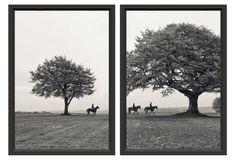 "Ben Wood, Morning Ride Diptych, set of 2, 21""x25"", black frame, $369"