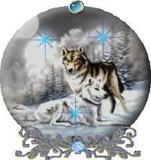 Resultado de imagen para lobos y vampiros enamorados