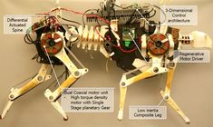 MIT's cheetah robot runs faster, more efficiently, can carry its own power supply video- yikes!!