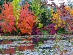 Boise, Idaho in The Fall – Keith Couch's Blog