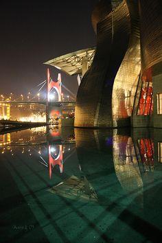 Museo Guggenheim e Ponte Salve - Bilbao