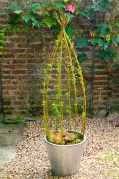 1 million+ Stunning Free Images to Use Anywhere Tiny Garden Ideas, Garden Yard Ideas, Veg Garden, Garden Trellis, Garden Boxes, Garden Crafts, Garden Projects, Garden Art, Garden Design