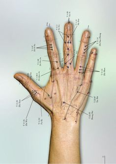 Acupuntura -atlas_fotogradico_de_acupuntura