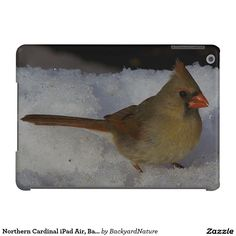 Northern Cardinal iPad Air, Barely There Case. Cover For iPad Air