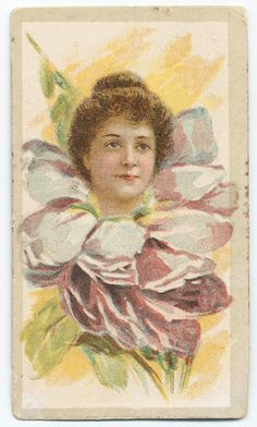 Beauties - Flower Girls ~ British American Tobacco Co. British American Tobacco, Flower Children, Flower Girls, New York Public Library, Vintage Ephemera, Print Ads, Vintage Advertisements, Vintage Prints, Beautiful Flowers