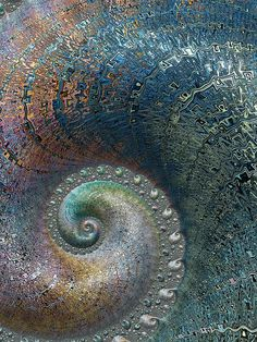 Fossil Spiral by Amanda Moore - Fossil Spiral Digital Art - Fossil Spiral Fine Art Prints and Posters for Sale