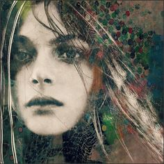 Birds Singing In The Sycamore Tree Dream A Little Dream Of Me by Paul Lovering - Photo 207151219 / 500px