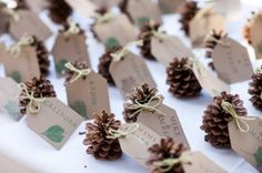 pine cone escort cards - cut out tags and stamp names