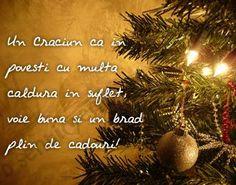 Craciun Fericit | CRACIUN FERICIT !!! - Pagina 2 Christmas Time, Christmas Crafts, Christmas Bulbs, Christmas Decorations, Holiday Decor, Painted Clothes, Pagan, Happy Halloween, Merry Christmas