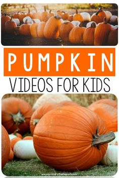 Over 10 pumpkin videos for kindergarten and first grade that are a great complement to any pumpkin unit. Use the videos to introduce or wrap up a lesson, for a center activity or early finishers. Fall Preschool, Kindergarten Science, Kindergarten Classroom, Kindergarten Fall Art Lessons, Classroom Ideas, First Grade Science, Autumn Activities, Diy Ideas, Creativity