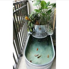Aquarium for small balcony - balcony garden for small balcony ahomesweethell aquarium balkon kleinenGarden poolPool and pool construction Nordheide - Desjoyaux on popular romantic backyard decoration ideas - DIY and