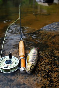 beaut of a rod. | a river runs through it. | pinterest | beautiful, Fly Fishing Bait